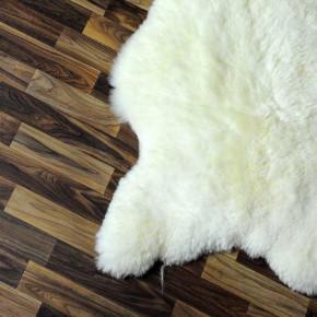 ÖKO Ziegenfell Ziege Fell 120x85 Kamindeko goatskin #5487